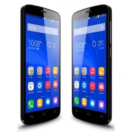 Téléphone Portable Huawei Holly 19 / Noir + Puce DATA