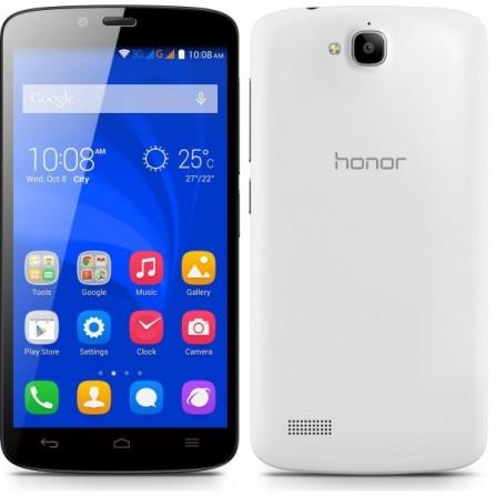 Téléphone Portable Huawei Holly 19 / Blanc + Puce DATA