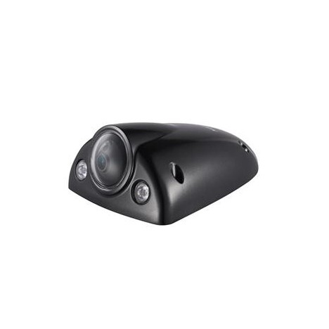 Camèra Hikvision IP ICR IR30m 2MP- DS-2CD6520ET
