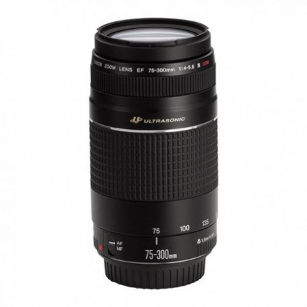 Objectif Canon EF 75-300mm f/4-5.6 III USM (6472A012)